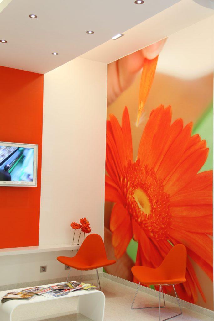 photo d'un mur imprimé avec un gerbera orange dans une salle d'attente