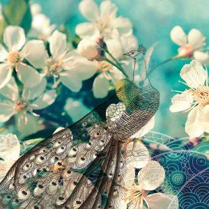 ADSHK Fleurs et paon
