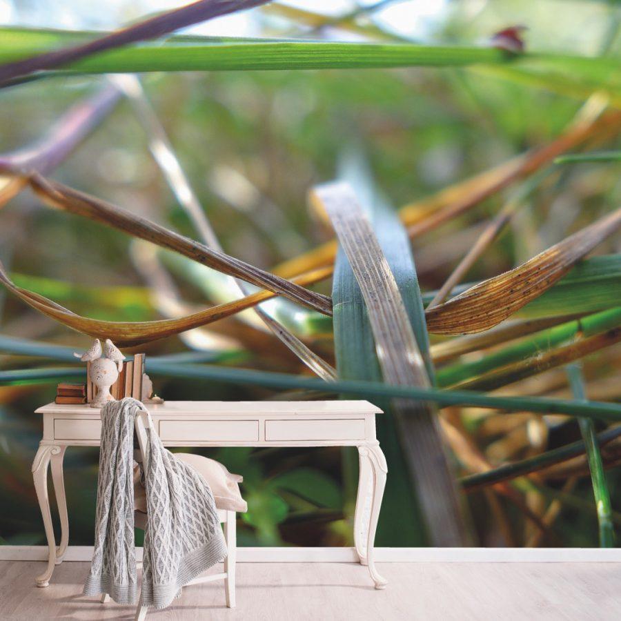 photo d'un mur imprimé avec des visuels d'herbes derrière un bureau