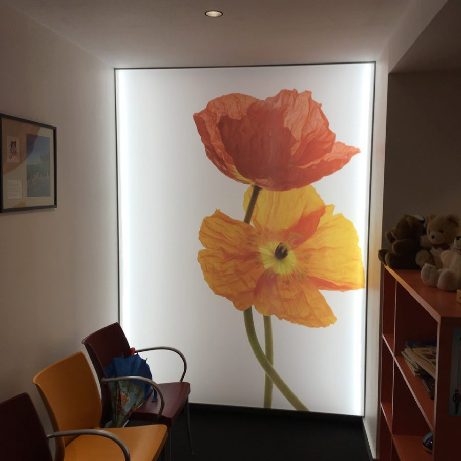 photo d'un mur rétroéclairé avec un visuel de fleurs orange par Michel Gantner